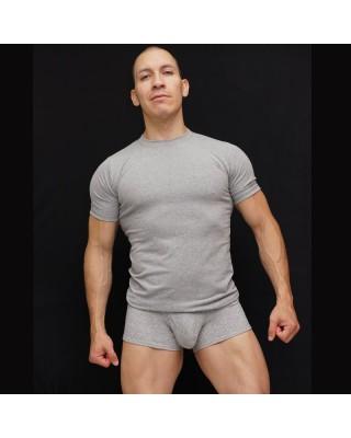 polera manga corta algodon con elastano melange vista de frente